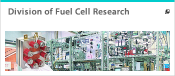 Division of Fuel Cell Research